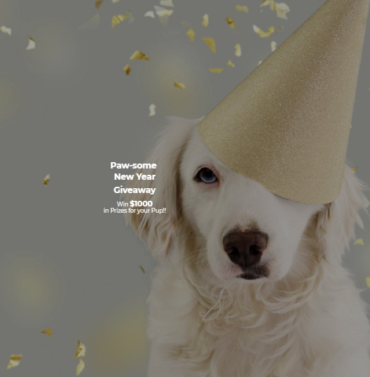 ZenPup Inc Paw-Some New Year Giveaway